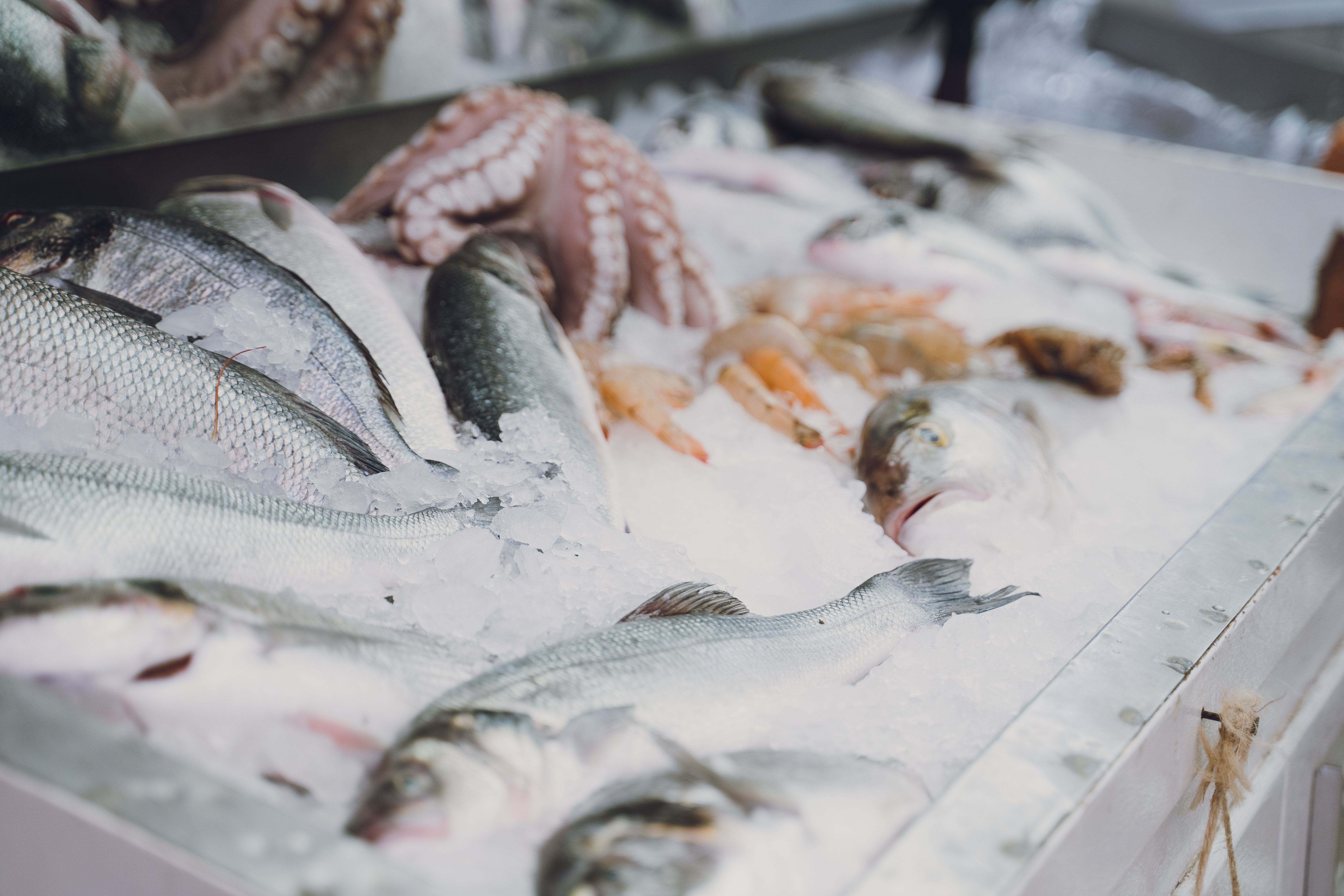 Frozen fish at the local market
